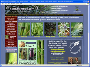 Visit the hardybamboo website